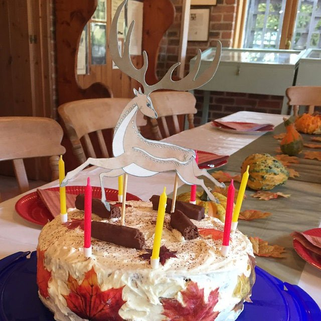 Wickstead's-Eat-Me-Customer-Photo-of-our-Edible-Maple-Leaves-and-Leaper-Deer