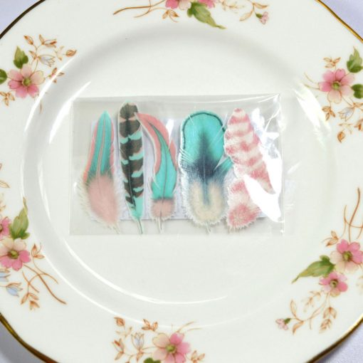 Wickstead's-Eat-Me-Edible-Images-Cotton-Candy-Feather-Favours-Cellophane-Wrap-(1)