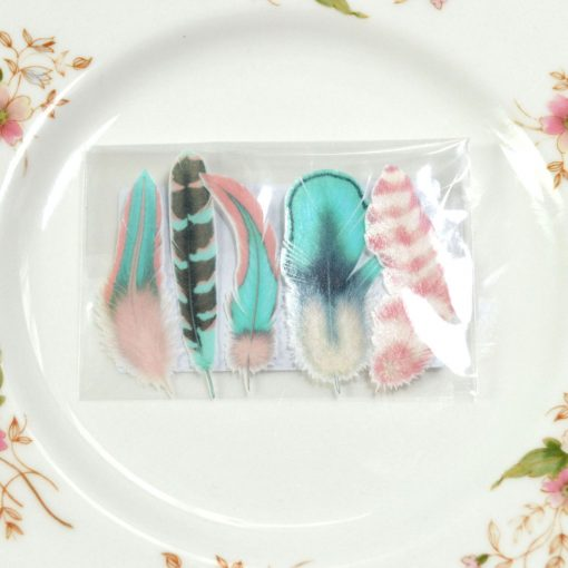 Wickstead's-Eat-Me-Edible-Images-Cotton-Candy-Feather-Favours-Cellophane-Wrap-(3)