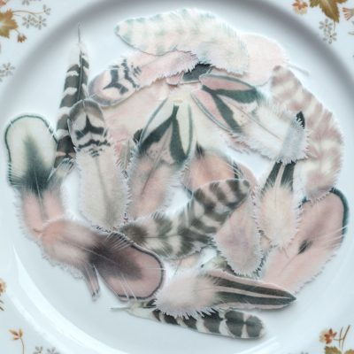 Wickstead's-Eat-Me-Edible-Wafer-Rice-Paper-Boho-Feathers-from-our-Desert-Blush-Collection-(2)