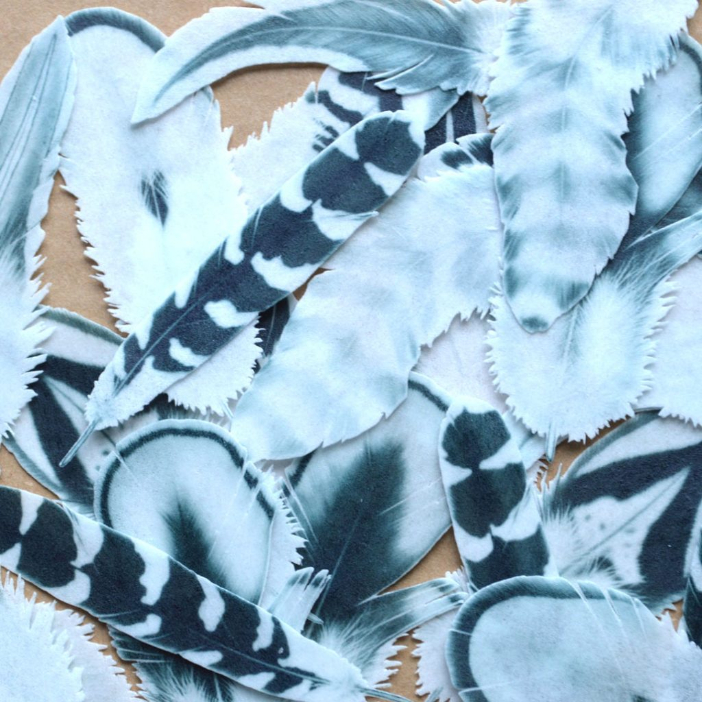 Wickstead's-Eat-Me-Edible-Wafer-Rice-Paper-Boho-Feathers-from-our-Monochrome-Collection-(1)