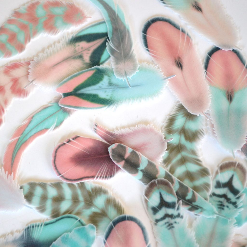 Wickstead's-Eat-Me-Edible-Wafer-Rice-Paper-Feathers-from-Cotton-Candy-Collection-(3)