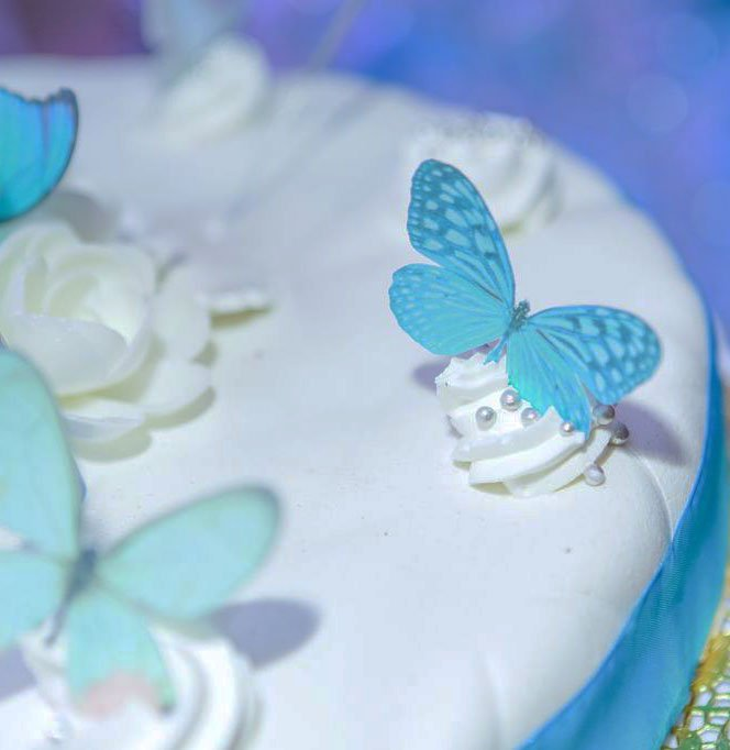 Wickstead's-Eat-Me-Customer-Photo-Blue-Butterflies-on-Sparkler-Cake-(3)