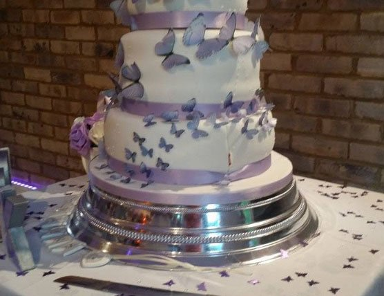 Wickstead's-Eat-Me-Customer-Photo-Purple-Butterflies---Custom-Shade-1