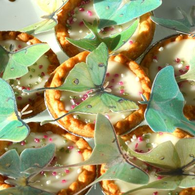 Wickstead's-Eat-Me-Edible-Sugar-Free-Vanilla-Wafer-Rice-Paper-3D-Butterflies-Iridescent-Green-Luna-Moths-(2)