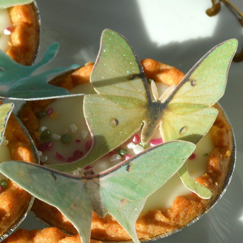 Wickstead's-Eat-Me-Edible-Sugar-Free-Vanilla-Wafer-Rice-Paper-3D-Butterflies-Iridescent-Green-Luna-Moths-(3)
