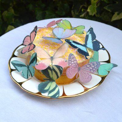 Wickstead's-Eat-Me-Edible-Sugar-Free-Vanilla-Wafer-Rice-Paper-3D-Butterflies-Pastel-Mix-Multicoloured-(2)