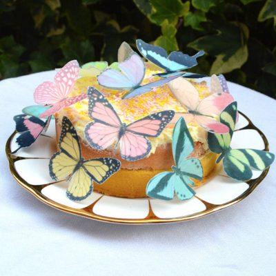 Wickstead's-Eat-Me-Edible-Sugar-Free-Vanilla-Wafer-Rice-Paper-3D-Butterflies-Pastel-Mix-Multicoloured-(3)