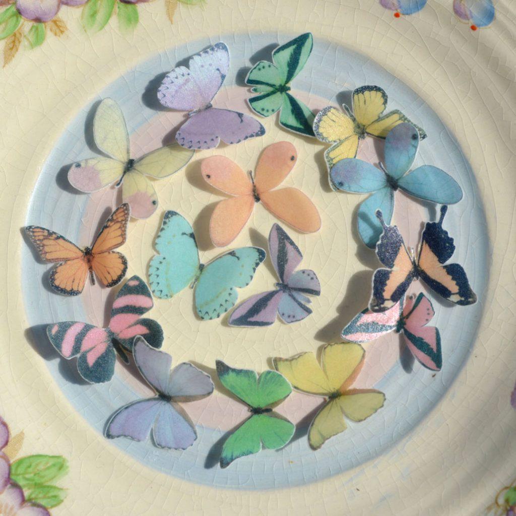 Wickstead's-Eat-Me-Edible-Sugar-Free-Vanilla-Wafer-Rice-Paper-3D-Butterflies-Pastel-Mix-Multicoloured-(7)