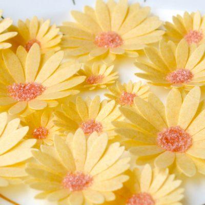 Wickstead's-Eat-Me-Edible-Sugar-Free-Vanilla-Wafer-Rice-Paper-3D-English-Daisy-Garden-Flowers-(7)