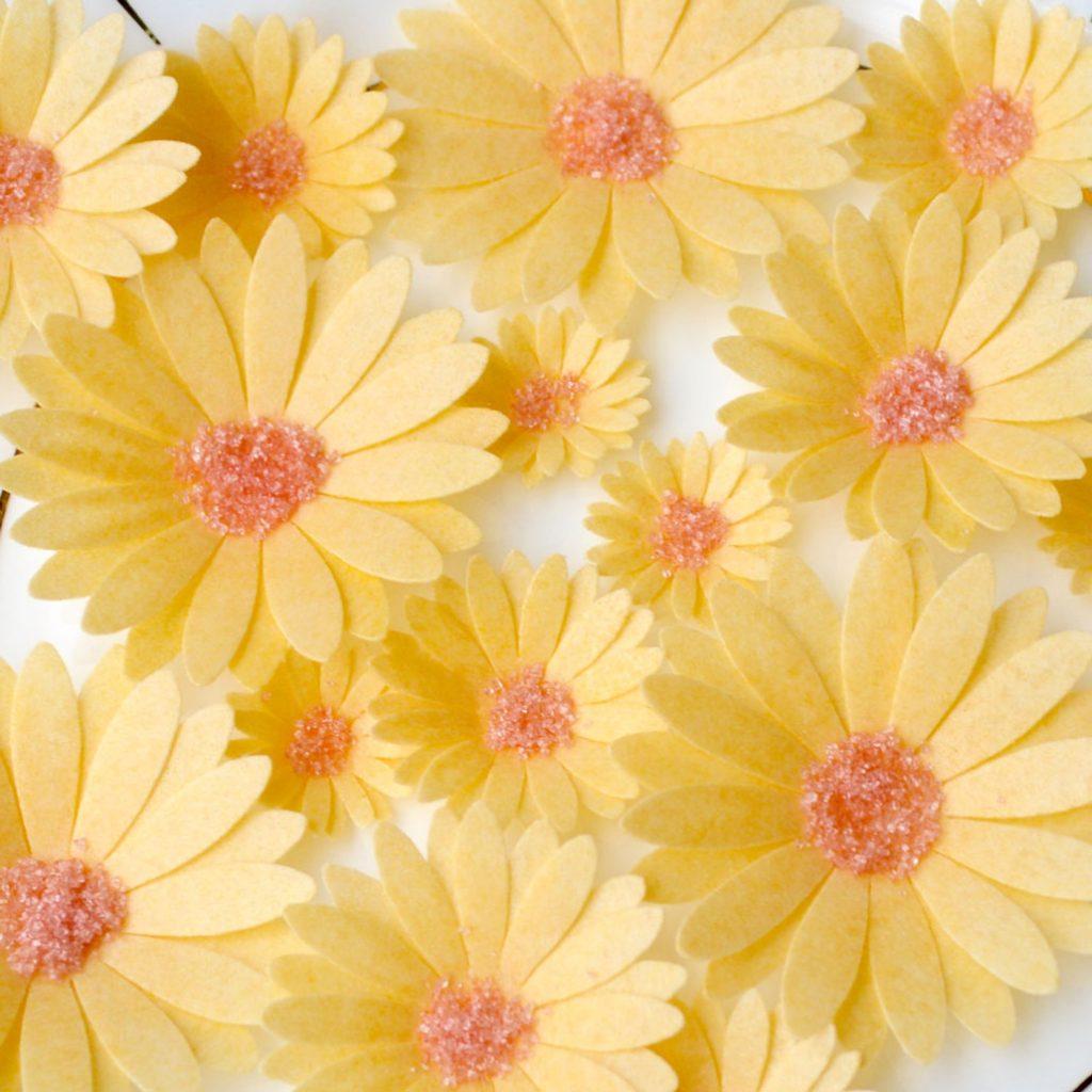 Wickstead's-Eat-Me-Edible-Sugar-Free-Vanilla-Wafer-Rice-Paper-3D-English-Daisy-Garden-Flowers-(9)