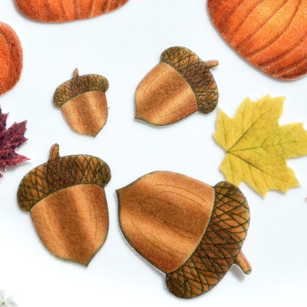 Wickstead's-Eat-Me-Edible-Sugar-Free-Vanilla-Wafer-Rice-Paper-Acorns-Double-Siided-(1)