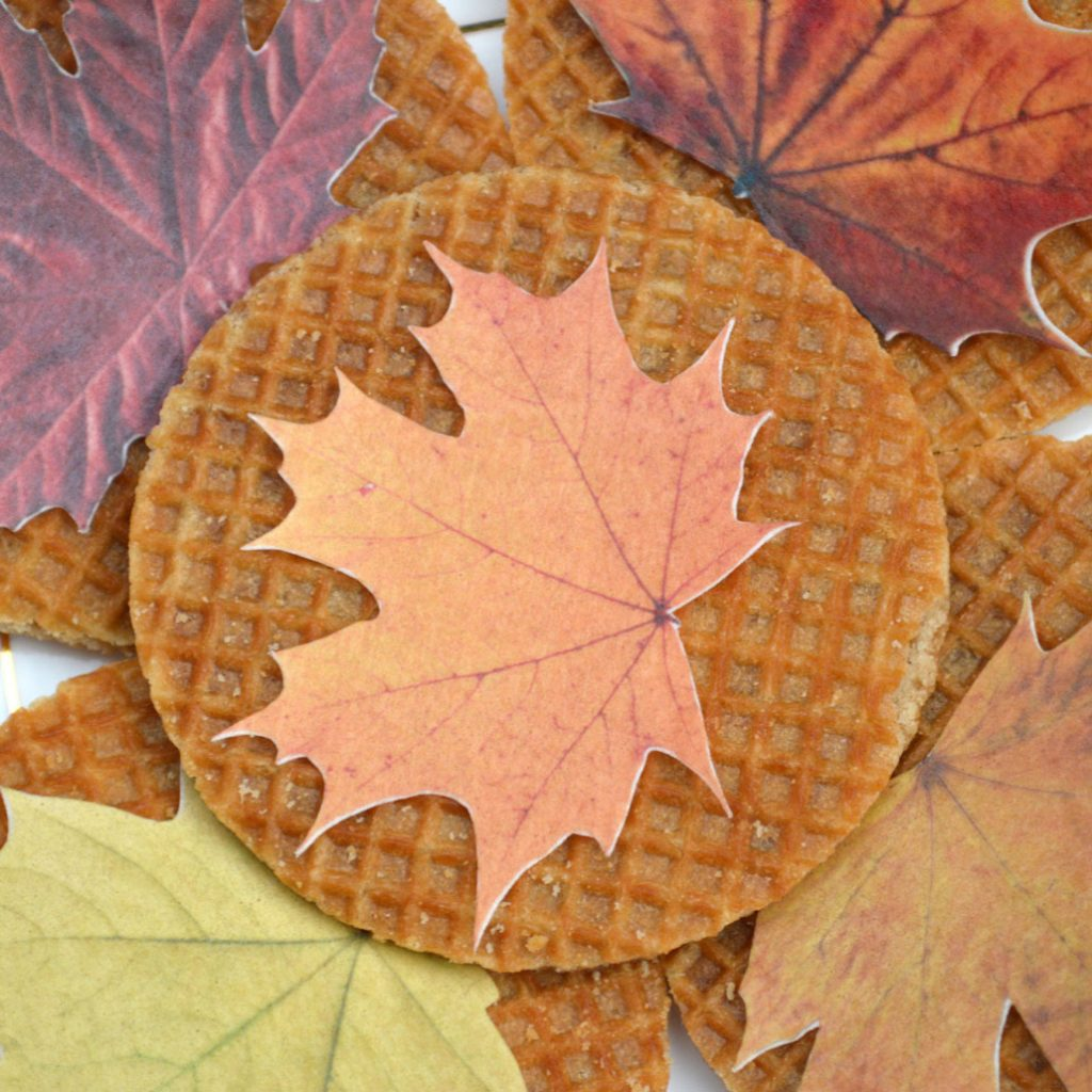 Wickstead's-Eat-Me-Edible-Sugar-Free-Vanilla-Wafer-Rice-Paper-Autumn-Fall-Maple-Leaves-Leaf-(10)