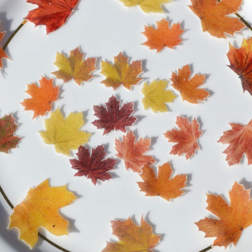 Wickstead's-Eat-Me-Edible-Sugar-Free-Vanilla-Wafer-Rice-Paper-Autumn-Fall-Maple-Leaves-Leaf-(12)