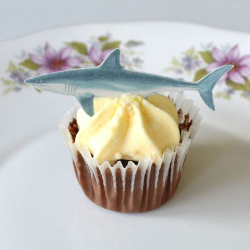 Wickstead's-Eat-Me-Edible-Sugar-Free-Vanilla-Wafer-Rice-Paper-Sharks-(4)