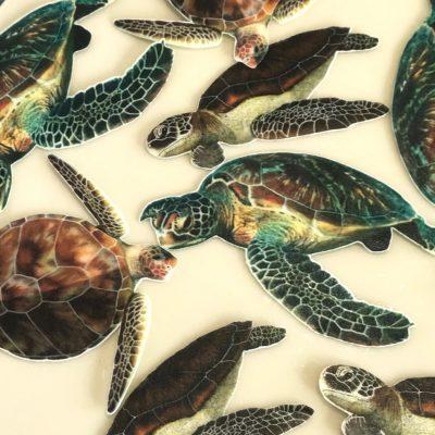 Wickstead's Eat Me Edible Sea Turtles