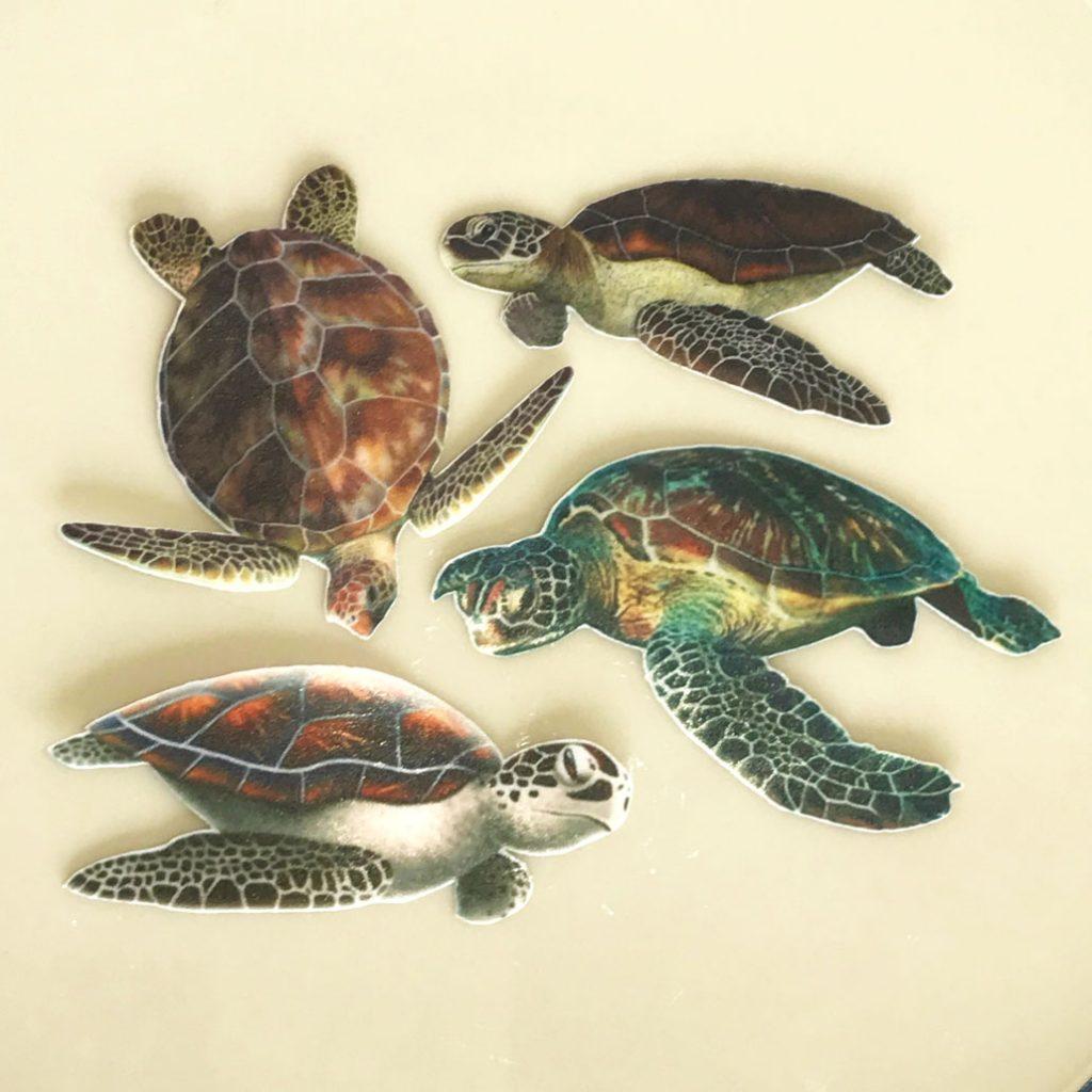 Wickstead's-Eat-Me-Edible-Wafer-Rice-Paper-Ocean-Turtles-2