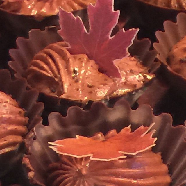 Wickstead's-Eat-Me-Mini-Maple-Leaves-on-Chocolate-Cups-filled-with-Chocolate-Moose
