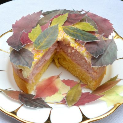 Wickstead's-Eat-Me-Edible-Sugar-Free-Vanilla-Wafer-Rice-Paper-Autumn-Fall-Leaves-Leaf-(1)
