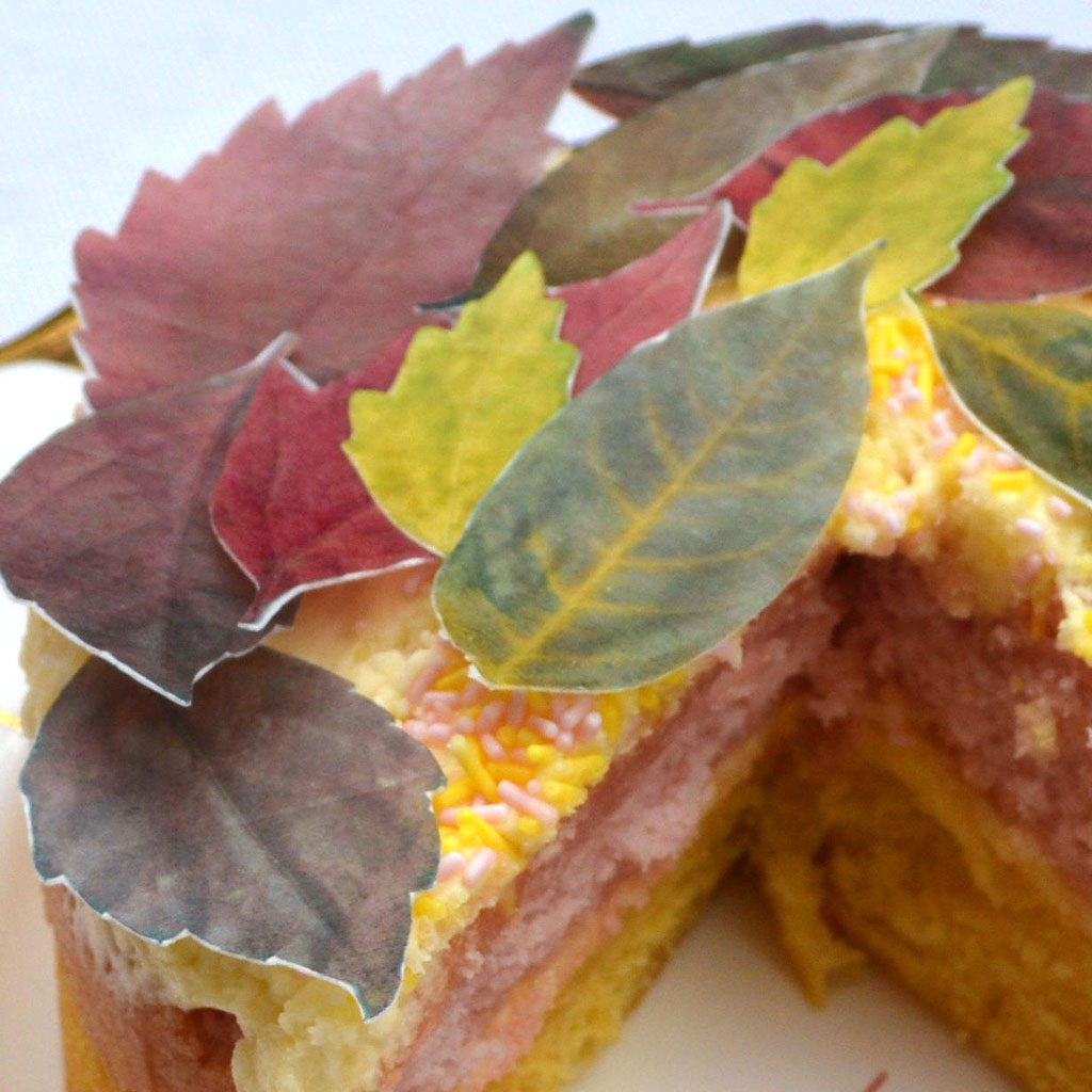 Wickstead's-Eat-Me-Edible-Sugar-Free-Vanilla-Wafer-Rice-Paper-Autumn-Fall-Leaves-Leaf-(4)