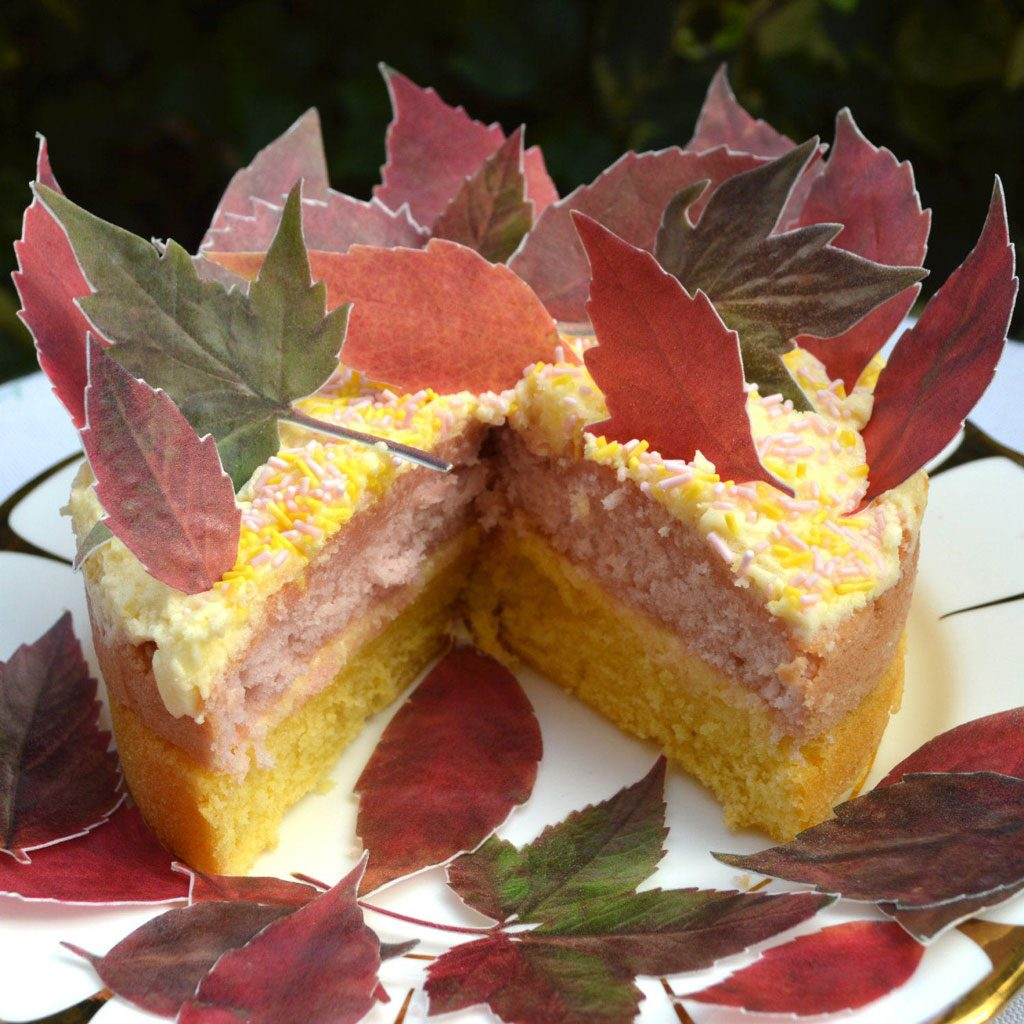 Wickstead's-Eat-Me-Edible-Sugar-Free-Vanilla-Wafer-Rice-Paper-Red-Autumn-Fall-Leaves-Leaf-(2)