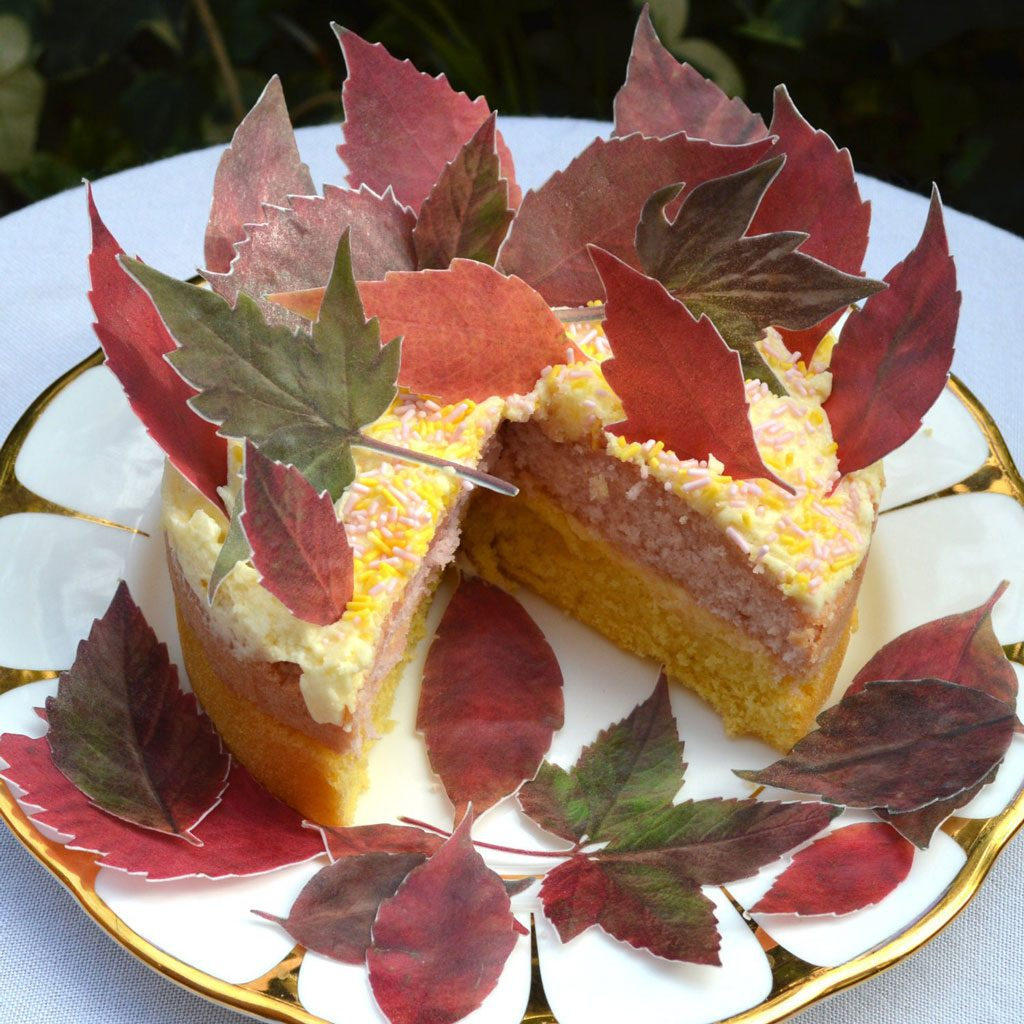 Wickstead's-Eat-Me-Edible-Sugar-Free-Vanilla-Wafer-Rice-Paper-Red-Autumn-Fall-Leaves-Leaf-(3)