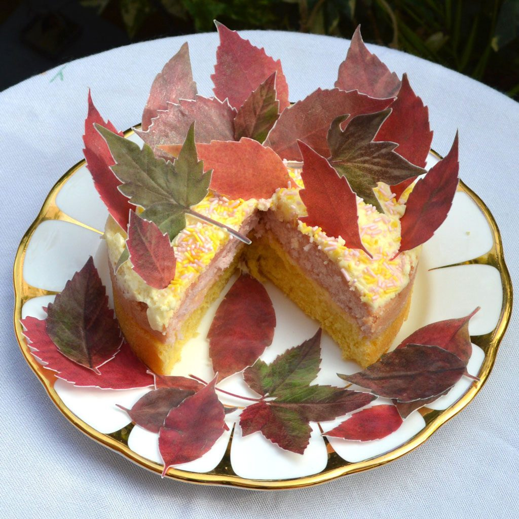 Wickstead's-Eat-Me-Edible-Sugar-Free-Vanilla-Wafer-Rice-Paper-Red-Autumn-Fall-Leaves-Leaf-(4)