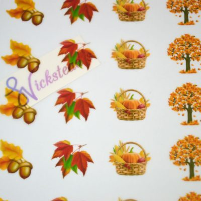 Wickstead's-Eat-Me-Edible-Meringue-Transfer-Sheets–Autumn-Fall-(4)