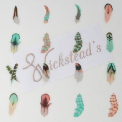 Wickstead's-Eat-Me-Edible-Meringue-Transfer-Sheets—Cotton-Candy-Feathers-(1)